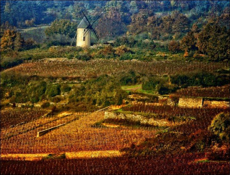 Son code postal est le 89 420. Cette commune fait partie d'une région produisant les vins  Côte De Nuits .