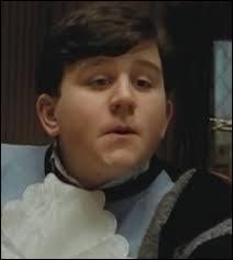Dudley est le frère de Harry.