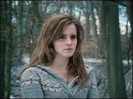 Hermione est amoureuse de Ron.