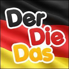 Les articles en allemand