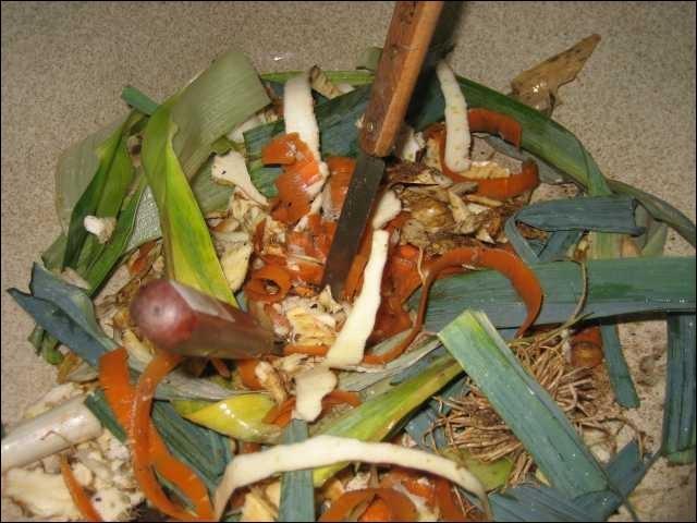 Si d'aventure, un dictateur de l'écologie vous poussait à avaler les épluchures au lieu de les recycler en compost, de quoi le traiteriez-vous ?