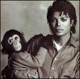 Comment s'appelle le chimpanzé de Michael ?
