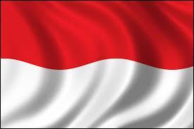 Par quoi est punie la masturbation en Indonésie ?