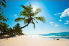 Géographie - Quelle est la plus grande île des Antilles ?