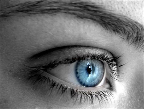La chanson  Plus bleu que tes yeux  a donné naissance à un duo virtuel. Quels en sont les interprètes ?