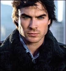 Quel acteur incarne Damon dans  The vampire diaries  ?