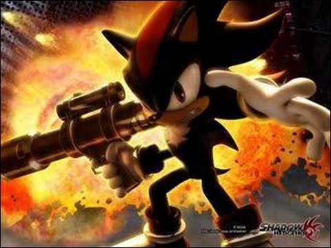 Quel est le nom du thème de Shadow the Hedgehog ?