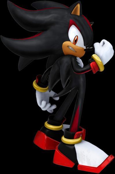 Quel est le nom du thème de Shadow dans Sonic 2006 ?