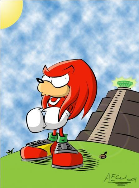 Quel est le nom du thème de Knuckles dans Sonic Adventure ?