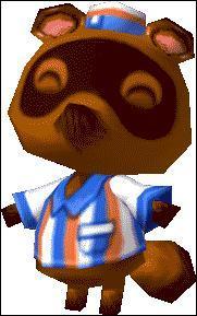 Animal Crossing Wild World (2)