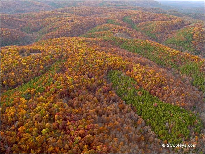 Habitant à l'origine l'est et le sud-est du pays, les Cherokee ont été repoussés de force sur un plateau s'étendant sur le Missouri, l'Arkansas, l'Oklahoma et le Kansas, entre les rivières Arkansas et Missouri, le plateau Ozark. De quel pays vient probablement ce nom ?