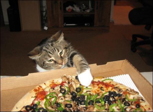 Ne la touche pas avec tes  pâtes  ! En 1889, Raffaele Esposito crée la pizza... en hommage à la reine du même nom :