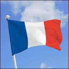 En France, quelle est la langue la plus parlée ?
