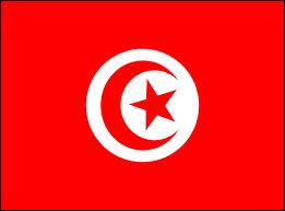 À quel pays correspond ce drapeau ?