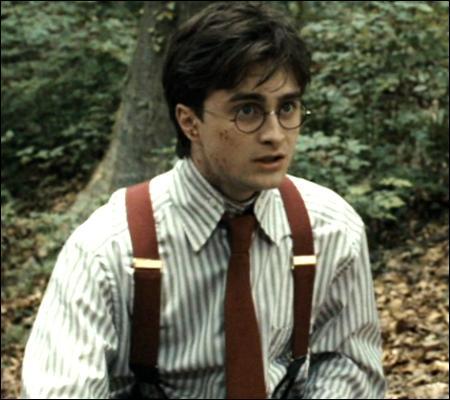 Lassé de ces fausses notes, Harry propose aux deux tourtereaux de faire un tour au ministère de la Magie. L'excursion se passe mal, et le trio se retrouve dans la forêt. Expliquez-moi alors l'image ci-contre !