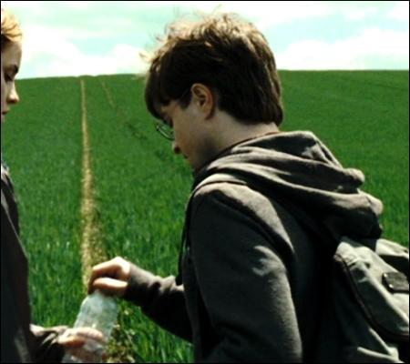 Refroidis par l'expérience  camping trois étoiles  et afin de se dégourdir les pattes, Harry et Hermione se lancent dans des randonnées. Sac à dos et bouteilles d'eau, où vont nos trois compères ?