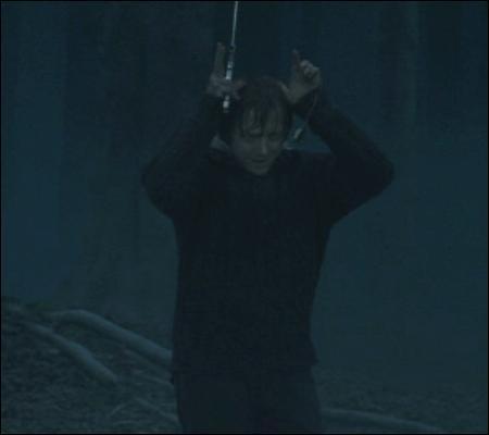 Ron, en bon maître nageur sauveteur, vient à sa rescousse. Non content d'avoir sauvé Harry, que fait-il d'autre ?