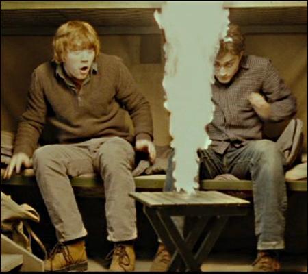 L'amitié semble être de retour entre Ron et Harry. Ron parle de ses aventures à Harry, et Harry des siennes. Pourquoi ce jet de flammes, alors ?