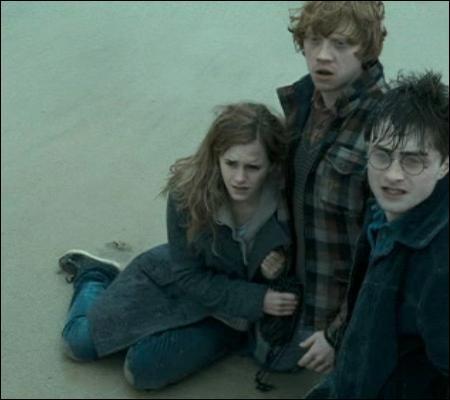 Harry se fait ensuite inviter chez Drago Malefoy. L'hospitalité n'étant pas le point fort des Malefoy, Harry quitte très vite les lieux pour finir le séjour à la plage. Pourquoi cet air si déconfit, Harry ?