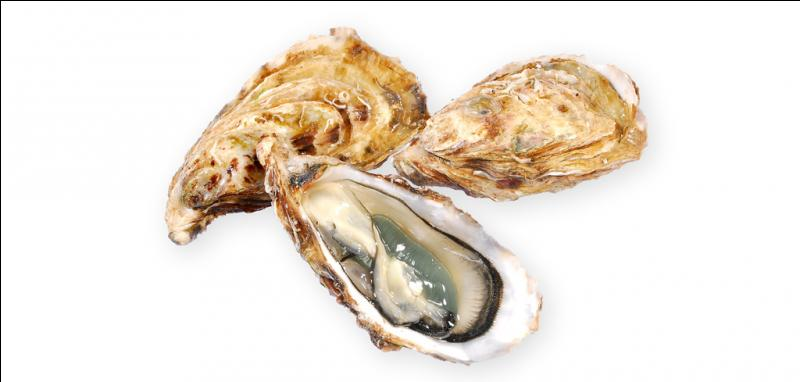 Cette année nous dégusterons les plus petites des huîtres creuses :