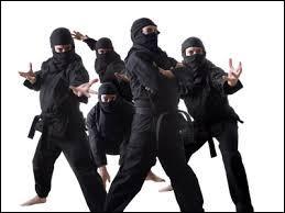 Nindja : Parmi ces mots, quel est le synonyme de ninja ?