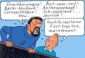 Les expressions du capitaine Haddock