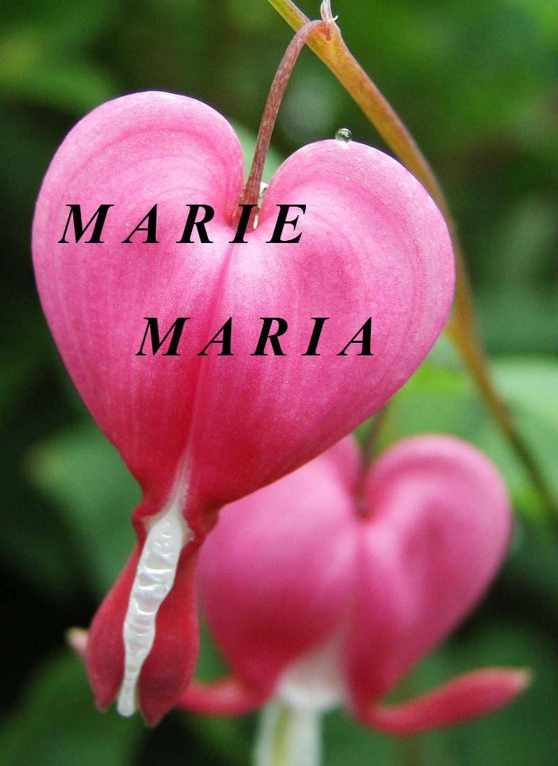Marie, Maria !