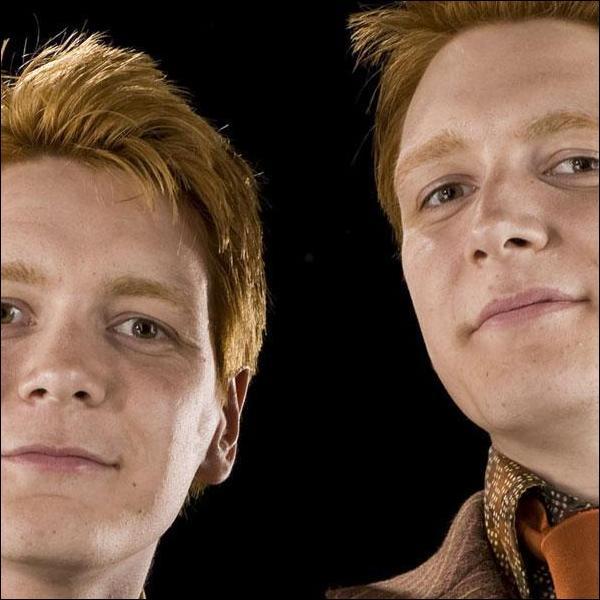 Que font les jumeaux Weasley à Percy lorsque celui-ci arrive au Terrier en compagnie du ministre de la Magie, dans le tome 6 ?