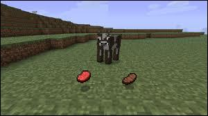 Que rapportent les vaches ?