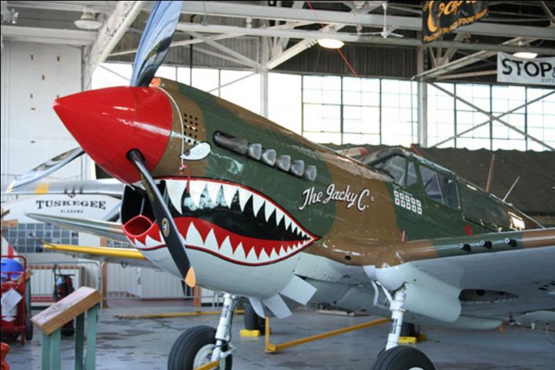 Cet avion combattit en Asie, en Europe, en URSS, en Afrique du nord. Il équipa les armées de l'air de la Grande-Bretagne, des USA, de la France. Il équipa les « tigres volants » de « l'American Volunteer Group ». Il fut remplacé par le mythique P-51d. On le connait bien grâce à sa mâchoire dessinée devant son hélice. Quel est cet avion ?