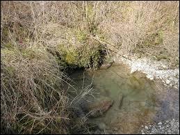 C'est un sous-affluent du Rhône par l'Ain et l'Oignin, il est divin et pourtant il copine avec la Sarsouille.