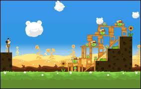 Le geai est un oiseau. Dans quel jeu l'objet du jet est un oiseau ?