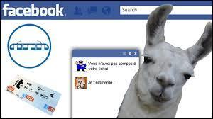 Lequel de ces deux Youtubeurs a diffusé la vidéo  Serge le lama, sa vraie histoire sur Facebook  ?