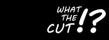 C'est MrAntoineDaniel qui diffuse les vidéos  What the cut .