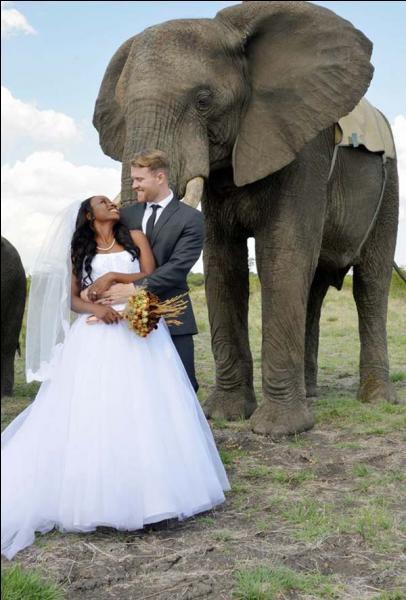 Sur quel continent ce mariage s'est-il déroulé ?