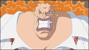 Comment s'appelle la mère adoptive de Ace et Luffy ?