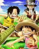 Ace, Luffy et Sabo, petits