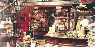 Pour votre troisième année à Poudlard vous devez acquérir  le Monstrueux livre des Monstres . Mais où l'acheter ?