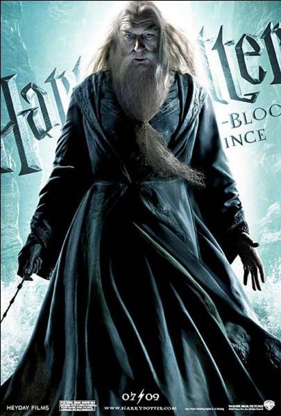 Dans le livre, il y a une grande bataille opposant l'Ordre et quelques mangemorts avant la mort de Dumbledore. Cette bataille absente dans le film est surnommée :