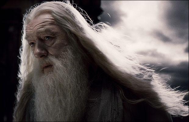 Dans le film, on n'assiste pas à la cérémonie d'enterrement de Dumbledore. Dans le livre, on voit que ------------------ est venu(e) lui rendre hommage.