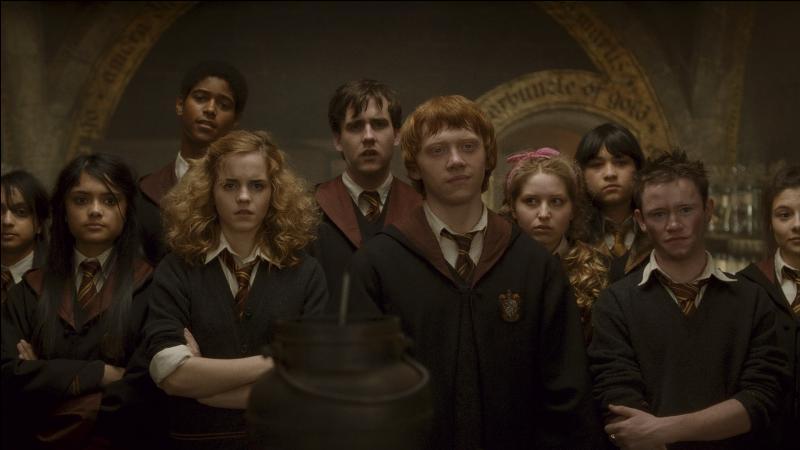 Voici les Gryffondor en cours de potions... Mais qu'est-ce qu'ils font tous là ? Dans le livre, les seuls Gryffondor de sixième année en cours de potions sont :