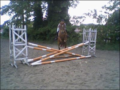 Quel est cet obstacle ?