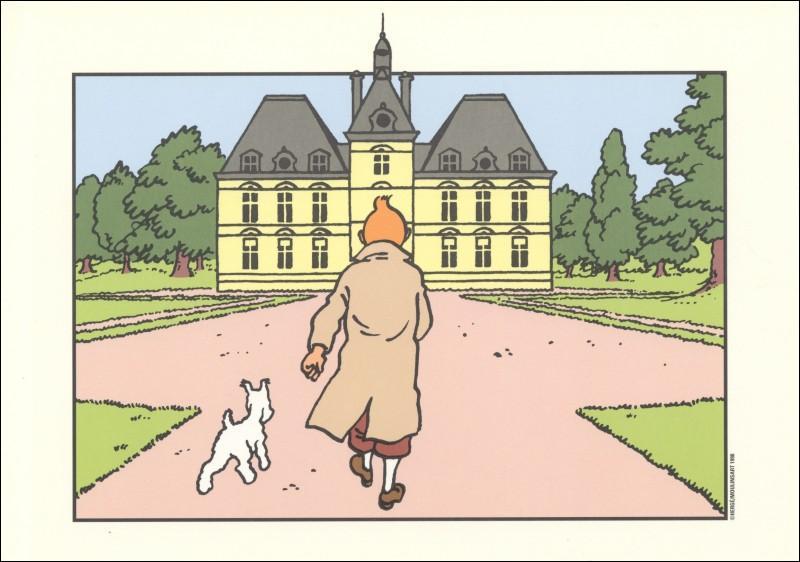Grâce à quels revenus le capitaine Haddock et ses compagnons ont-ils pu acheter le château de Moulinsart ?