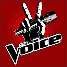 Sur quelle chaîne retrouvons-nous  The Voice  ?