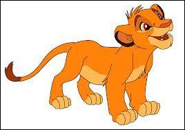 Comment s'appelle ce lion ?
