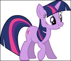 Twilight Sparkle a-t-elle des frères ou sœurs ?