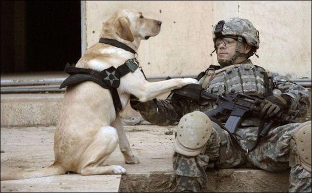 On peut être soldat et ...
