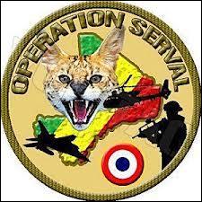 Comment s'appelle l'opération menée en Centrafrique contre les Sélékas ?