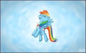 Quel élément représente Rainbow Dash ?