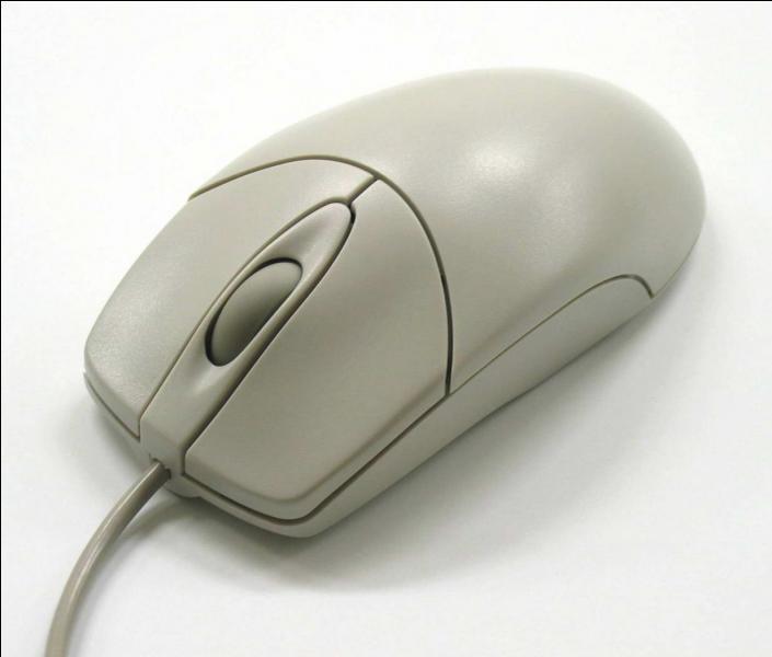 Quand ce n'est pas un animal on l'utilise pour déplacer le curseur sur un écran.